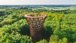 sjælland skovtårnet