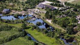 vestjylland flamingo park